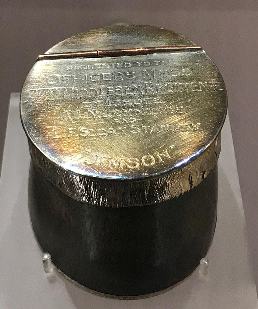Jimson2.jpg